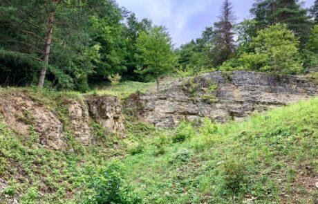 Kalksteinbruch in Göttingen